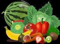 legume, coco-pixeby