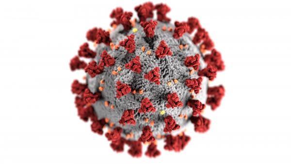 CDC, foto unplash