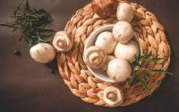 Ciuperci. FOTO Unsplash.com/ autor Thanh Soledas