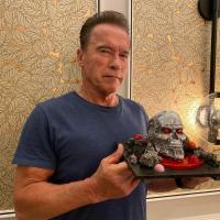 Arnold Schwarzenegger, sursa instagram
