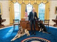 Joe Biden, sursa foto Casa Alba