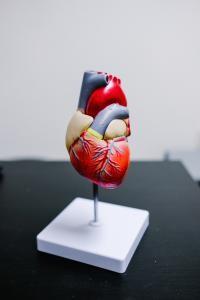 Dieta cu conținut scăzut de carbohidrați, foto Unsplash/ autor: NeONBRAND