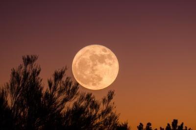 Luna Plina. Foto Unsplah/ Autor Ganapathy Kumar
