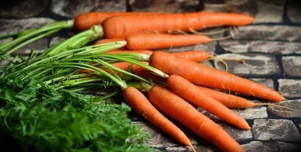 Morcovul. 7 beneficii surprinzătoare pentru sănătate. Foto pixabay.com autor congerdesign