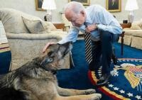 Joe Biden și Champ, foto The White House)