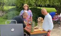 Hooka, câinele vegan, alături de Andrei Roșu, Smiley și Chef Samuel, captură foto Facebook