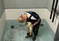 Un pui de focă are prima lecție de înot. Captură foto Twitter