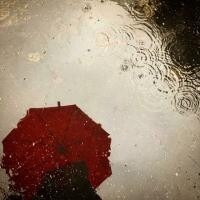 Unsplash.com/ autor Janine Robinson