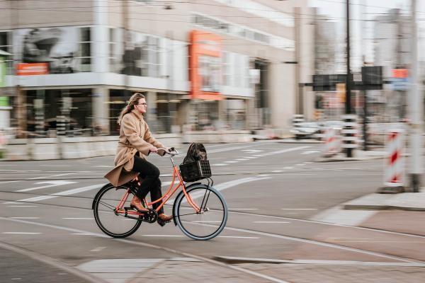 Bicicletă, foto Unsplash, sursa Micheile Henderson