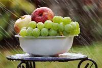 Fructe, sursa pixabay